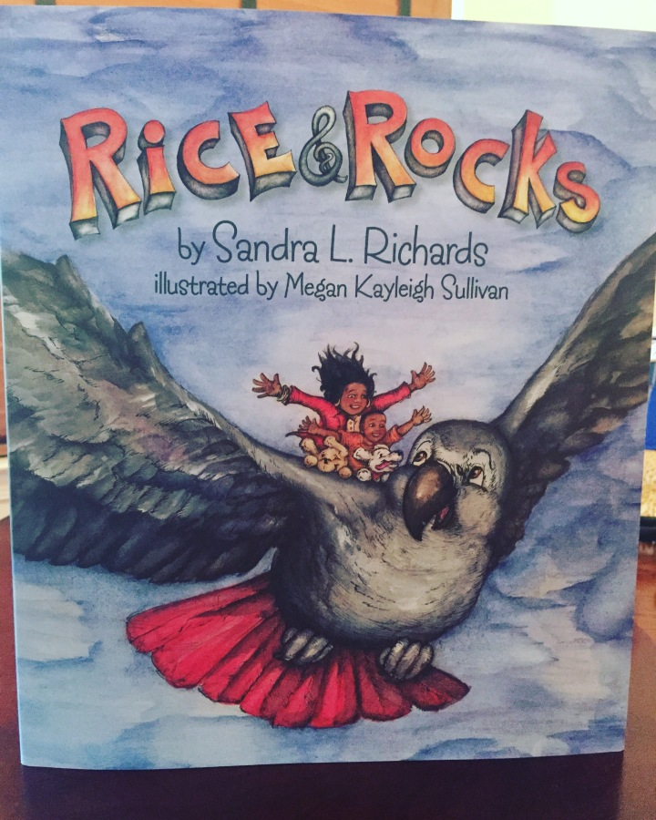 Rice & Rocks Book Review